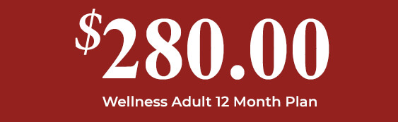 $280 Wellness Adult 12 Month Plan